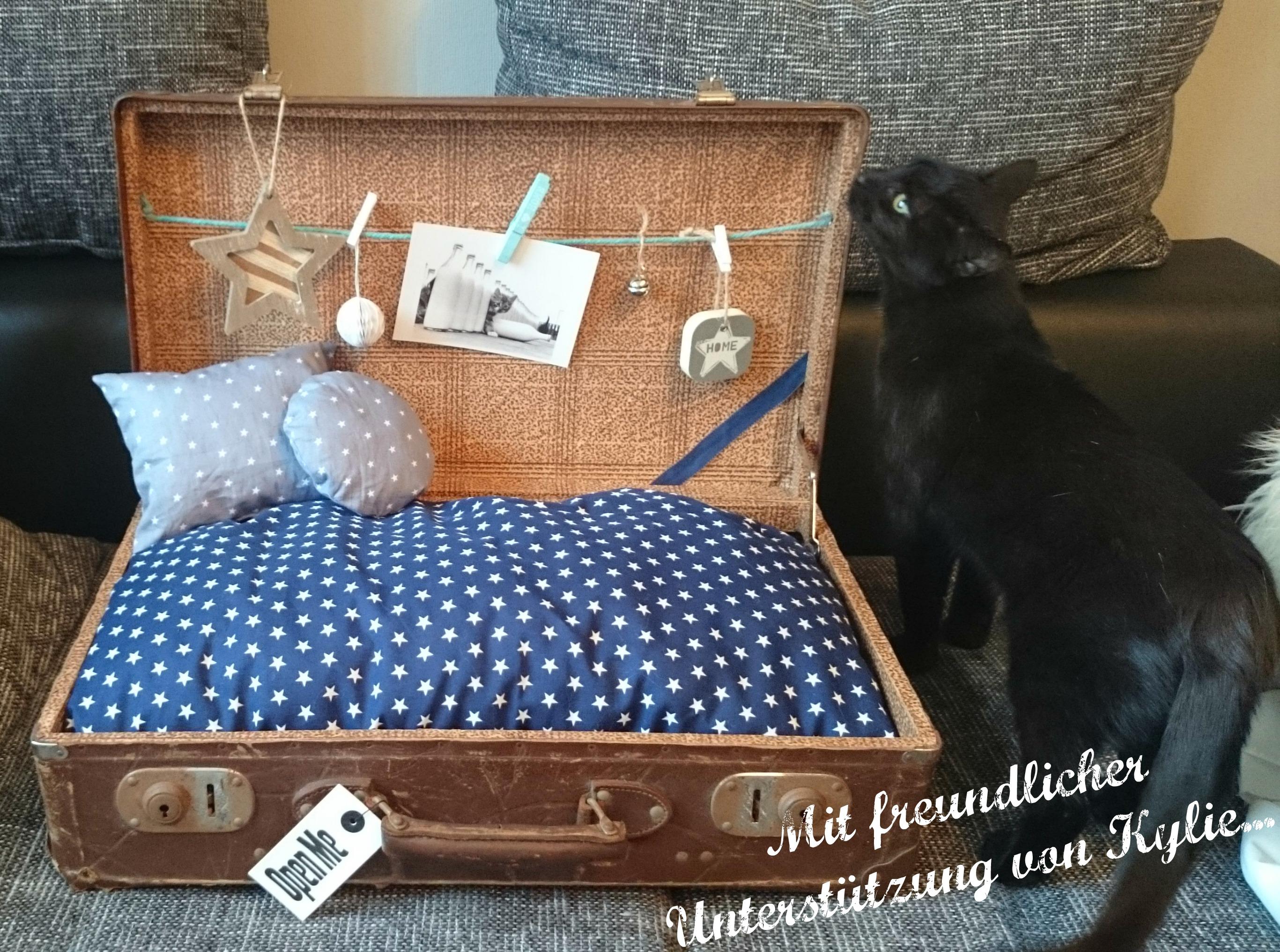 Koffer alt als Hundekörbchen