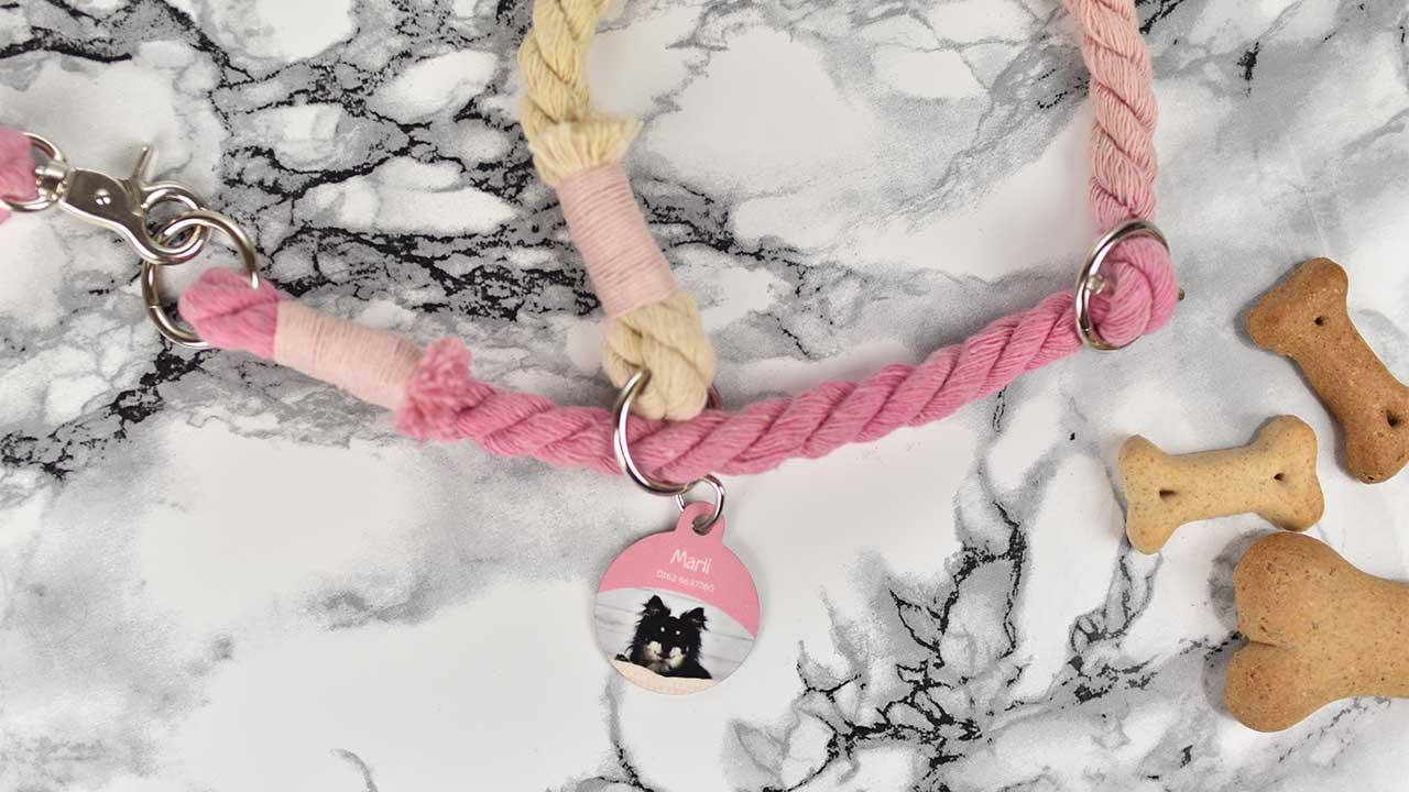 Individuelle Fotoprodukte für Hund und Frauchen [Anzeige]