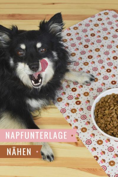 Napfunterlage nähen für Beyond Hundefutter inkl. Schnittmuster und ...