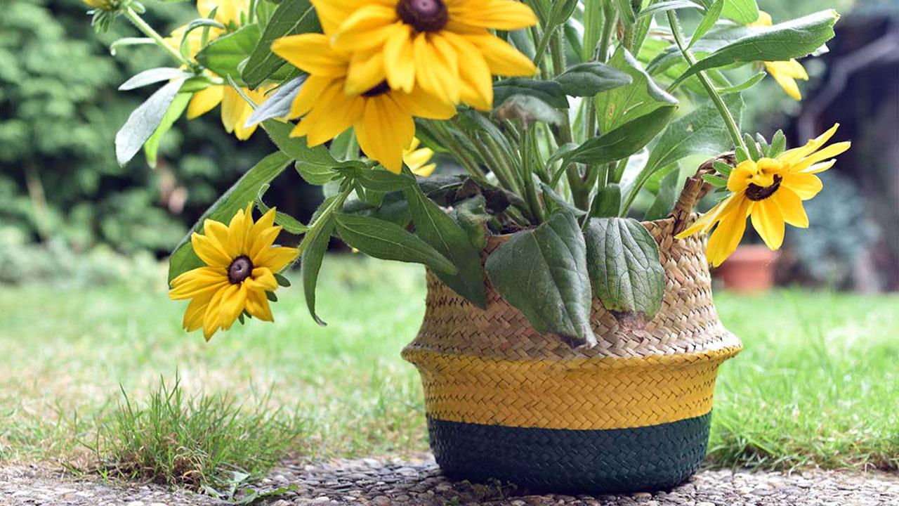 [DIY] Blumentopf mal anders