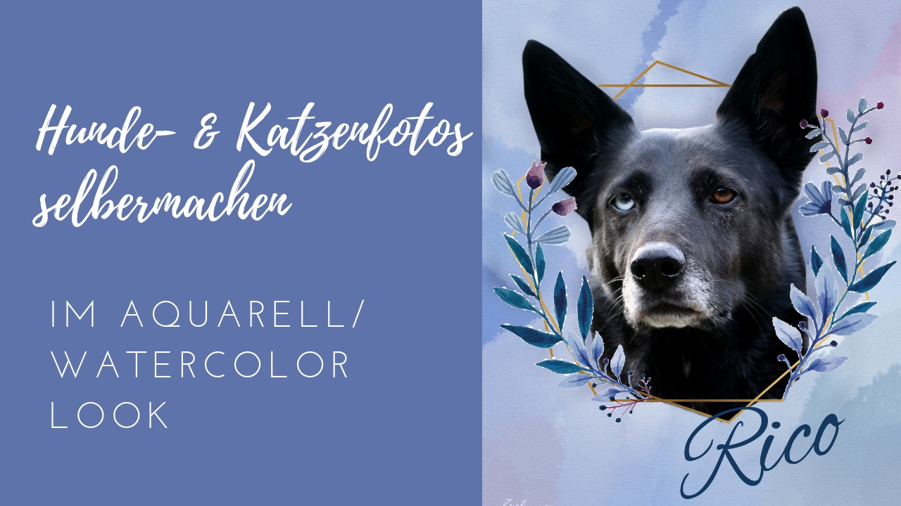 [DIY] Hunde- & Katzenfotos im Aquarell/ Watercolor Look