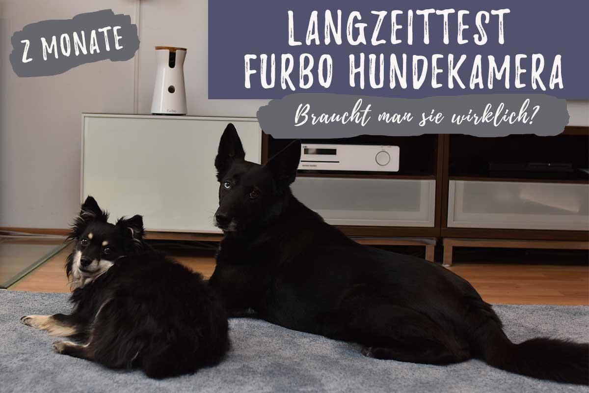 Langzeittest Furbo Hundekamera
