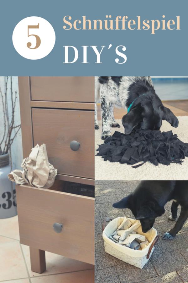 5 DIY für Suchspiele mit Hund