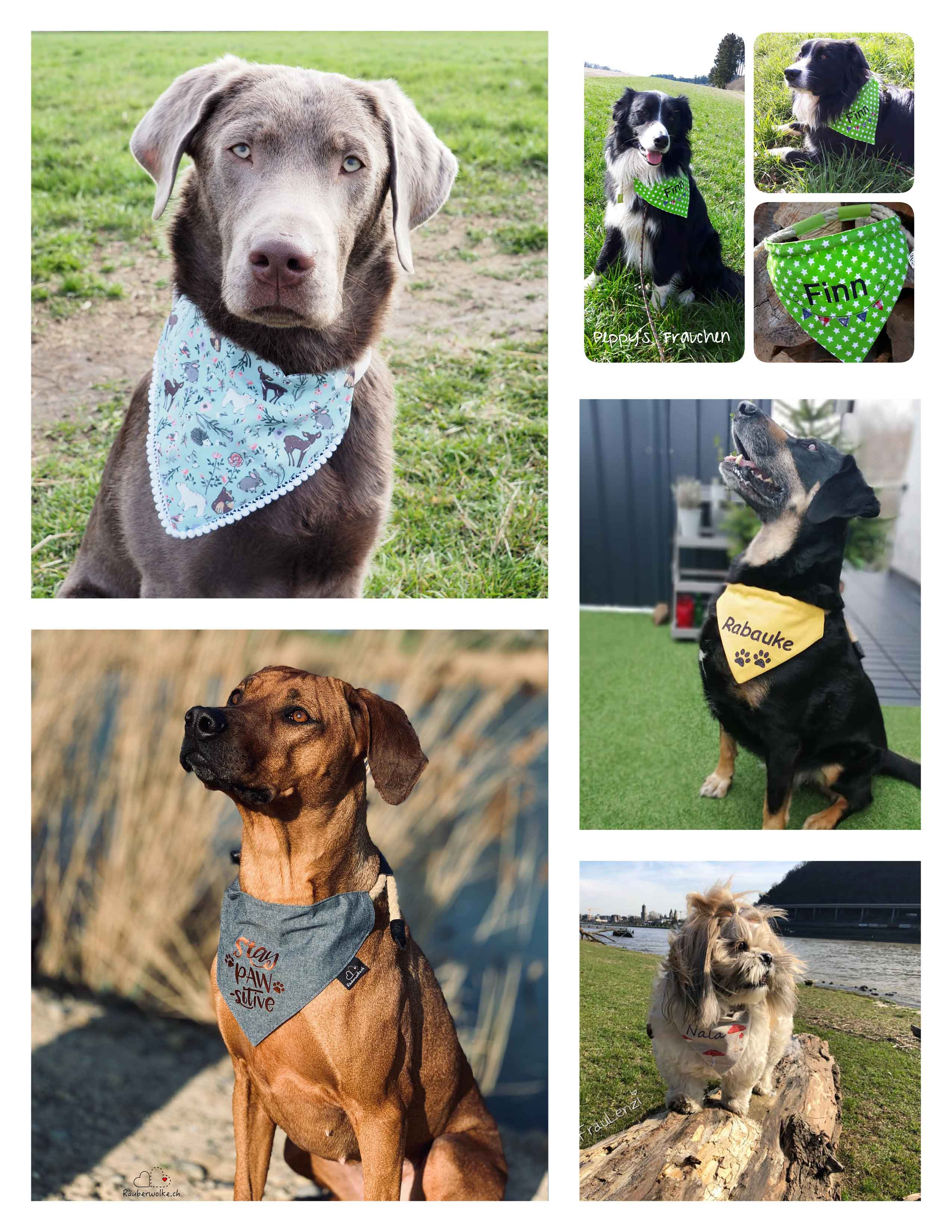 Hunde mit Tau-Hundehalstüchern - Schnittmuster und Naehanleitung