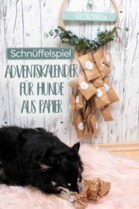 DIY Adventskalender fuer Hunde