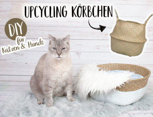 DIY Katzen- und Hundekörbchen ||Upcycling Korb mit passenden Kissen nähen