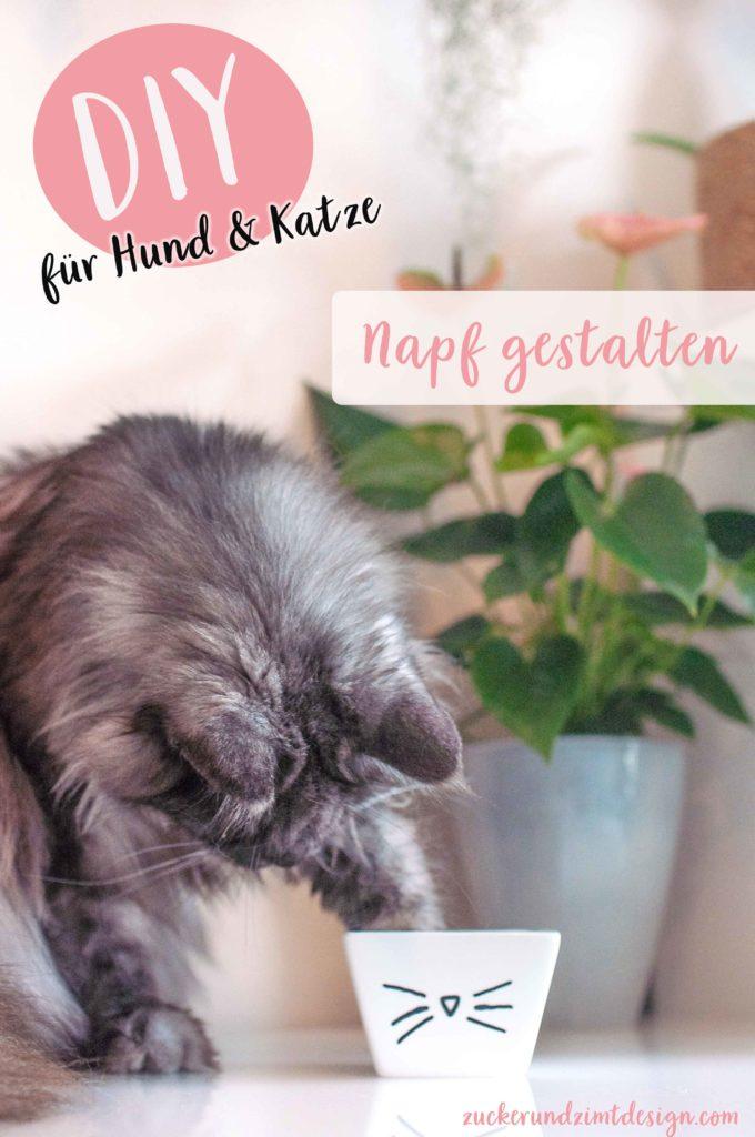 Tipps mit denen deine Katze mehr trinkt mit DIY Tutorial für bemalten Napf im Katzendesign - www.zuckerundzimtdesign.com