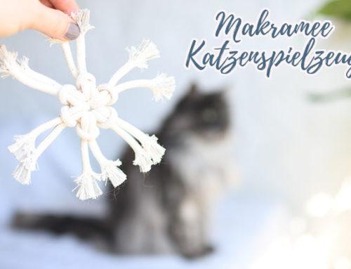 Miamaor Feine Beute für ein gesundes und aktives Katzenleben || mit DIY Makramee Katzenspielzeug
